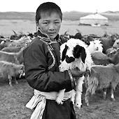 nodmadic goats